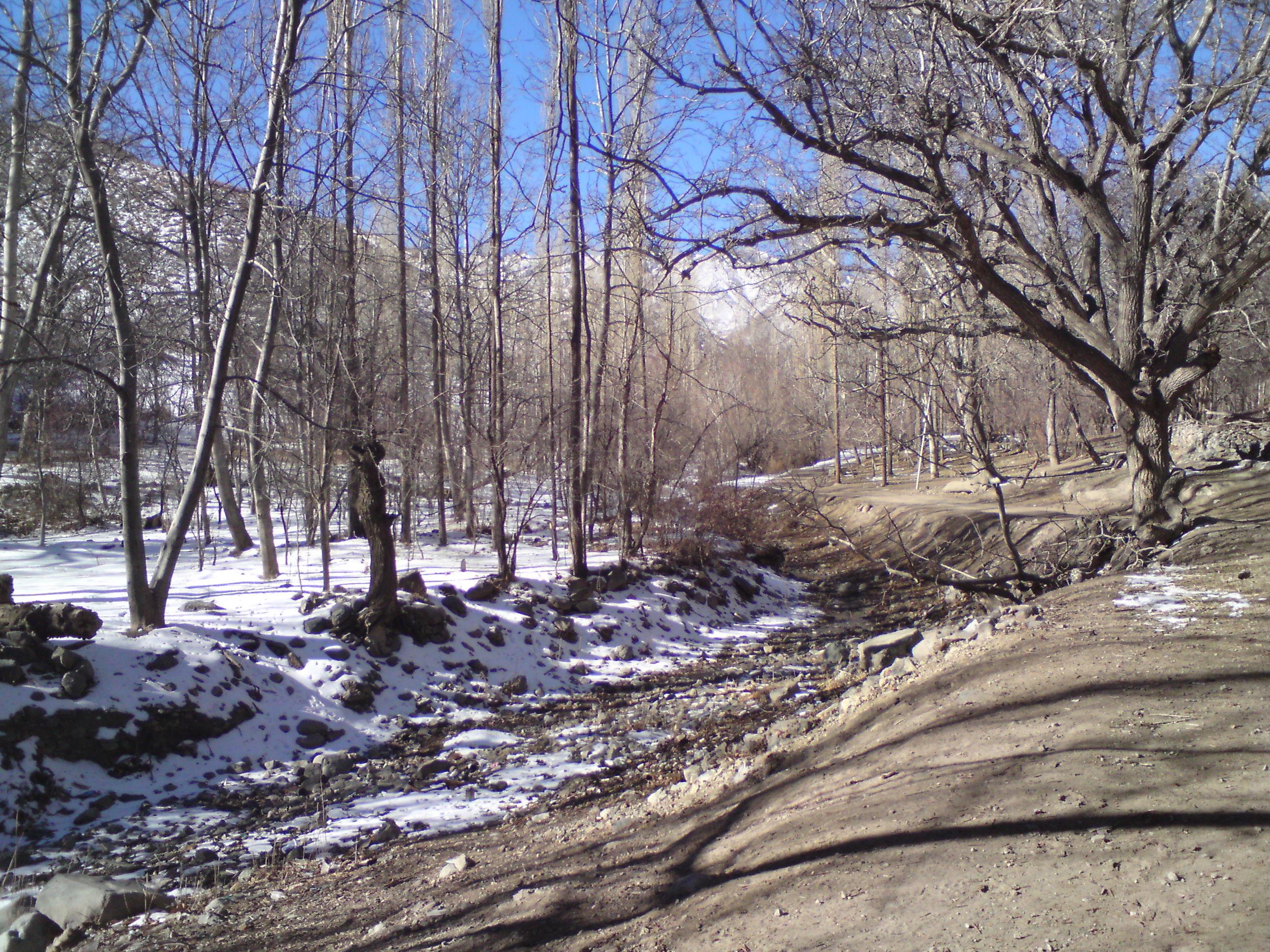 زمستان در باب طاهونه